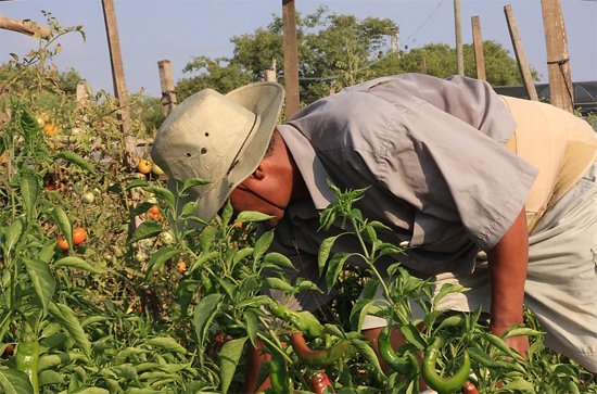 Hineni Atachlit Beta Israel Village working the field